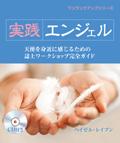 実践 エンジェル(ワンランクアップシリーズ)
